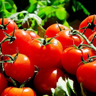 Är Tomat Nyttigt? Allt du Bör Veta!